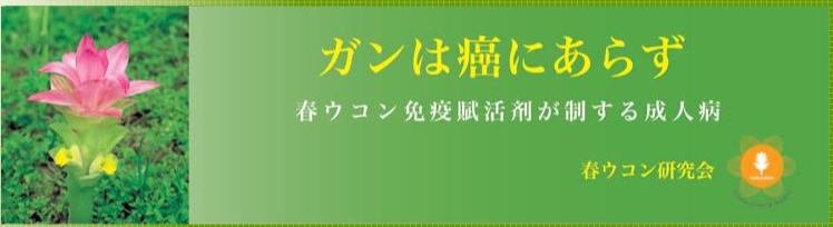 春ウコン研究会